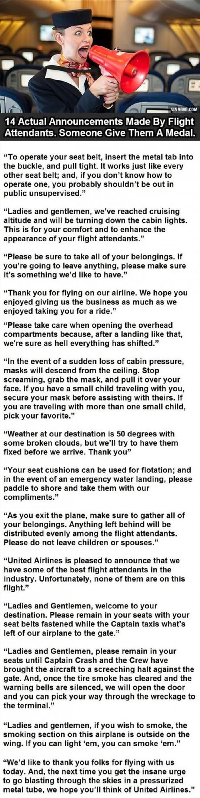application for united airlines flight attendant